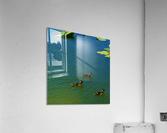 20190406_150448  Acrylic Print