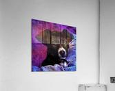 Soft Puppy Snuggles  Acrylic Print