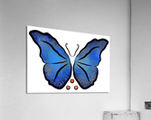 Deonioro - deep blue night butterfly with pearls  Acrylic Print