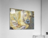 Dog Painting (24)  Acrylic Print