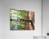 Landscape (60)  Acrylic Print