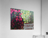Glendale Gardens Victoria BC-Rodos  Acrylic Print
