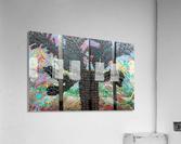 Eagles Domain  Acrylic Print