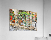 Decorative Bicycle In Cortona  Acrylic Print