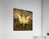 Shining Wings  Acrylic Print