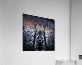 Lord of Shadows  Acrylic Print