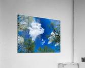 Bliss a Sky   Impression acrylique