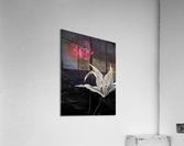 Wisigothique   Impression acrylique