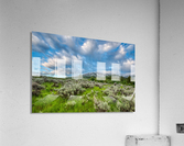 Goodenough Canyon Landscape  Acrylic Print