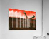 Loop  Acrylic Print