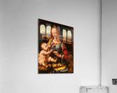 Leonardo da Vinci. The Madonna of the Carnation HD 300ppi  Acrylic Print