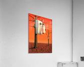 Pawel Kuczynski 29.  Acrylic Print