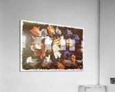Floral Explosion   Acrylic Print