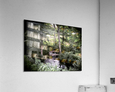 Hidden path  Acrylic Print