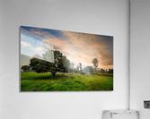DSC_9665  Acrylic Print
