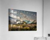 AZY_5232  Acrylic Print