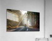 DSC_9746  Acrylic Print