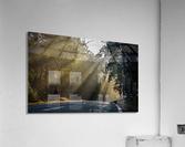 DSC_9742  Acrylic Print