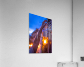 AZY_4615  Acrylic Print