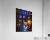 DSC_3206  Acrylic Print