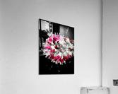 Pink Tree   Impression acrylique