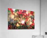 beyond visible  Acrylic Print