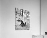 Relaxation spot   Acrylic Print