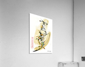 FAA Kreol Nippon 11  Acrylic Print