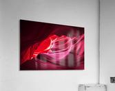Purple Wave  Acrylic Print