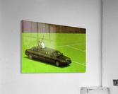 PawelKuczynski66  Acrylic Print