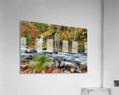 ColorFall  Acrylic Print