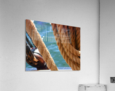 Learning the Ropes  Acrylic Print