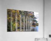 CK5L0858 studio  Acrylic Print