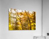 Foliage Blur  Acrylic Print
