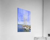 Mar Sailboat in Halifax  Acrylic Print