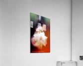 The Dance  Acrylic Print