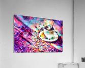 images   2019 11 12T202430.174_dap  Acrylic Print
