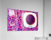 images   2019 11 12T202430.412_dap  Acrylic Print