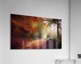 Autumnal Landscape 5  Acrylic Print