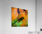 Tara   Acrylic Print
