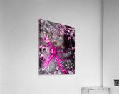 Inspire 2  Impression acrylique