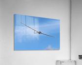 Riding the Wind  Acrylic Print
