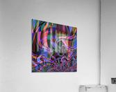 Aurora_Borealis  Acrylic Print