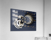 Give_Us_a_Kiss_11  Acrylic Print
