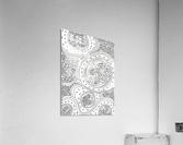 Wandering Abstract Line Art 06: Black & White  Acrylic Print