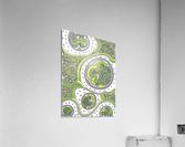 Wandering Abstract Line Art 06: Green  Acrylic Print