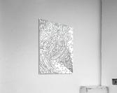 Wandering Abstract Line Art 11: Black & White  Acrylic Print