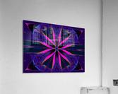 Pink Glow Wildflower  Acrylic Print