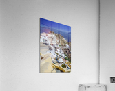 _TEL4087  Acrylic Print