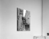 _TEL3768 Edit  Acrylic Print